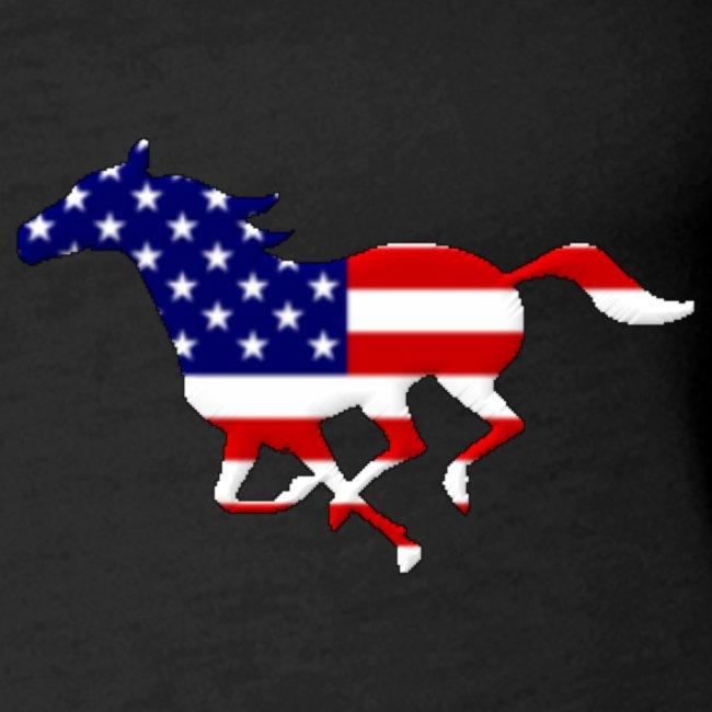 Cavallo al galoppo USA