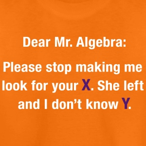 Dear Mr. Algebra Shirts - Kids' Premium T-Shirt