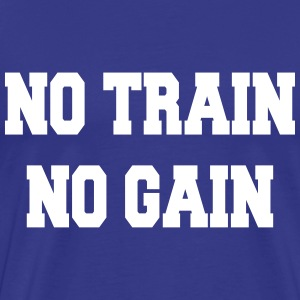 No train no gain T-skjorter - Premium T-skjorte for menn