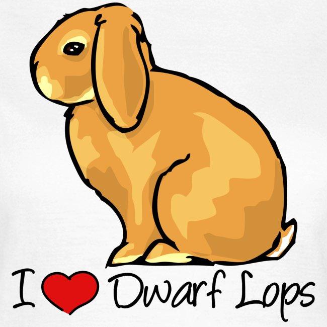 Dwarf Lop