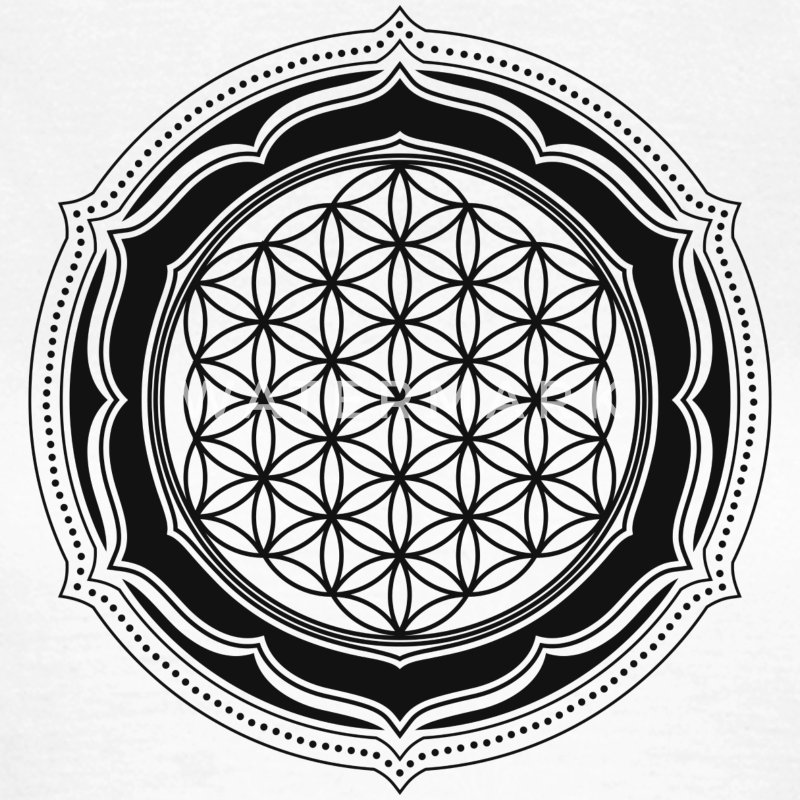 Flower of Life, Sacred Geometry, Yoga, Meditation, Zen, T-Shirts - Women's T-Shirt