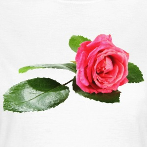 rose T-Shirts - Frauen T-Shirt
