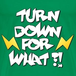 Turn down for what?! - Männer Premium T-Shirt