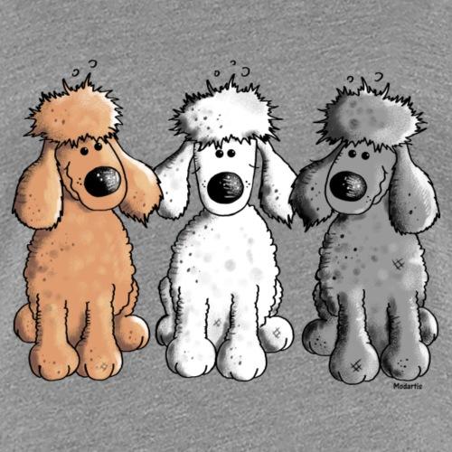 Pudel Trio - Hund - Hunde