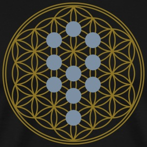 Flower of Life with 10 Sephiroth, Kabbalah, 2c T-S - Men's Premium T-Shirt