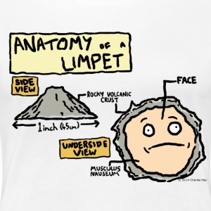 The Anatomy of a Limpet - Women's Premium T-Shirt