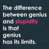 Stupidity - Men's T-Shirt