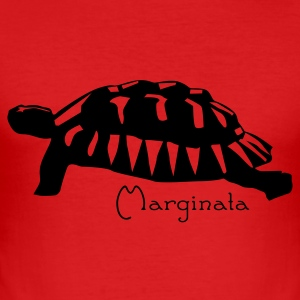 schildpad T-shirts - slim fit T-shirt