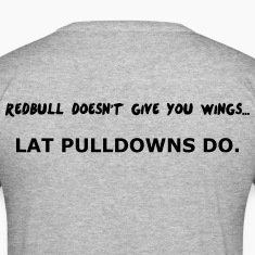Redbull doesn't give Wing T-Shirts