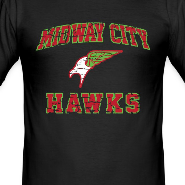 Midway City Hawks - Inspired by Hawkman