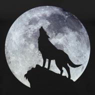 Motif ~ Wolf.