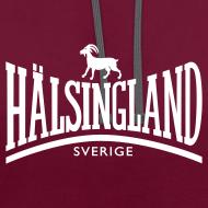 Motiv ~ HÄLSINGLAND