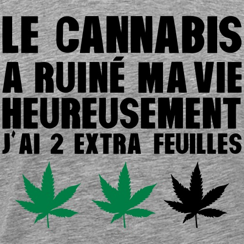 cannabis_ruine_vie_2_extra_feuilles_humo