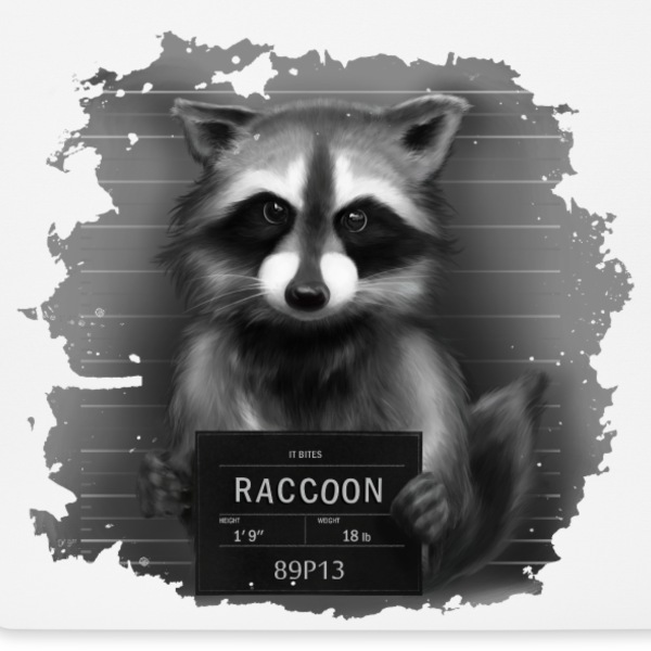 Raccoon Mugshot Altro - Tappetino per mouse (orizzontale)