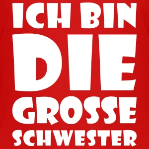 Die grosse Schwester T-Shirts - Teenager Premium T-Shirt
