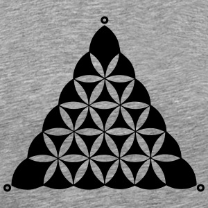 Crop circle, Flower Of Life, Triangle, Waden Hill T-skjorter - Premium T-skjorte for menn
