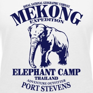 Elefant - Elephant T-Shirts - Women's V-Neck T-Shirt