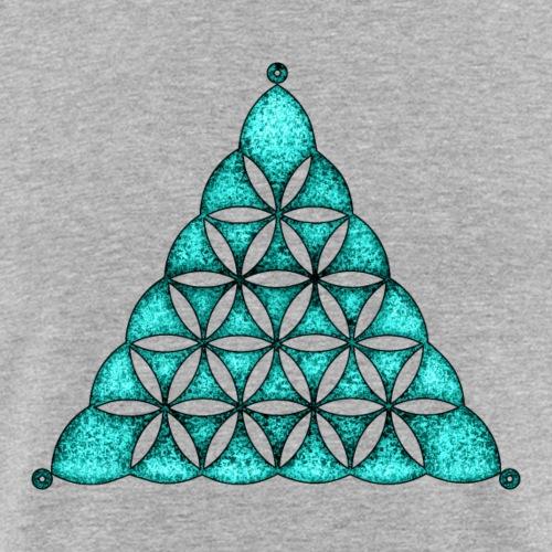 Korn Kreis, Blume des Lebens, Dreieck, Waden Hill