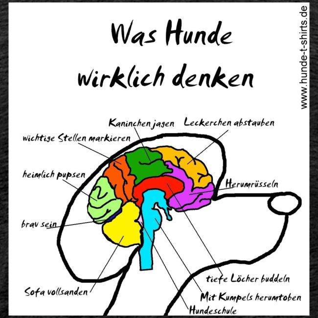 Dog-Brain