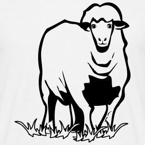 SHEEP nature, wildlife, T-Shirts - Men's T-Shirt