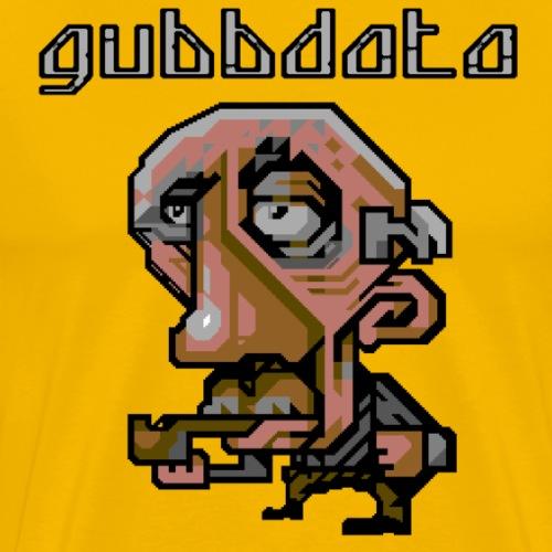 Gubbdata 1