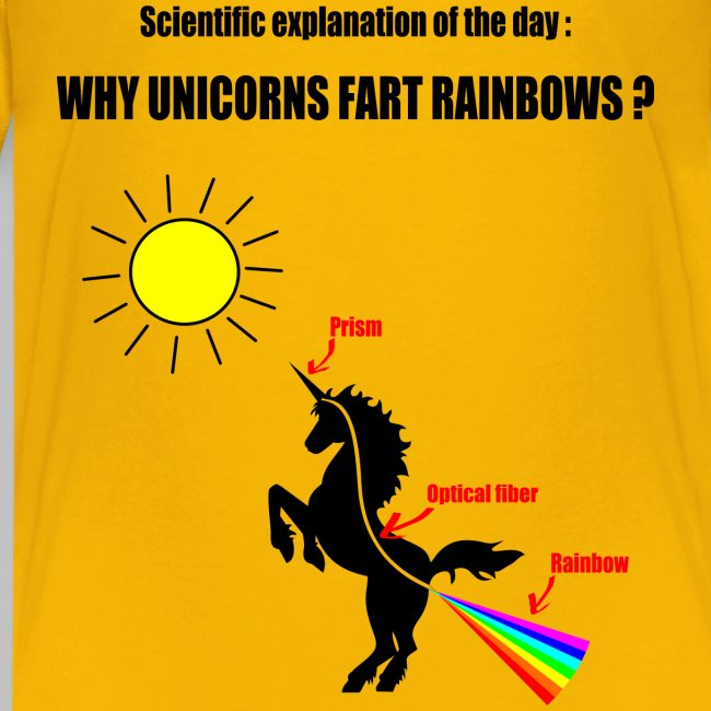 T-Shirt ado (teen) Unicorns and Rainbows