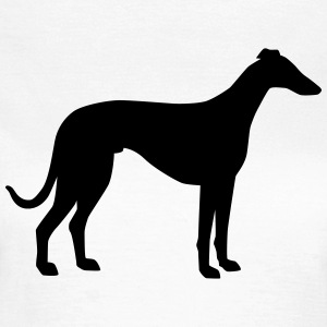 Windhund T-Shirts - Frauen T-Shirt