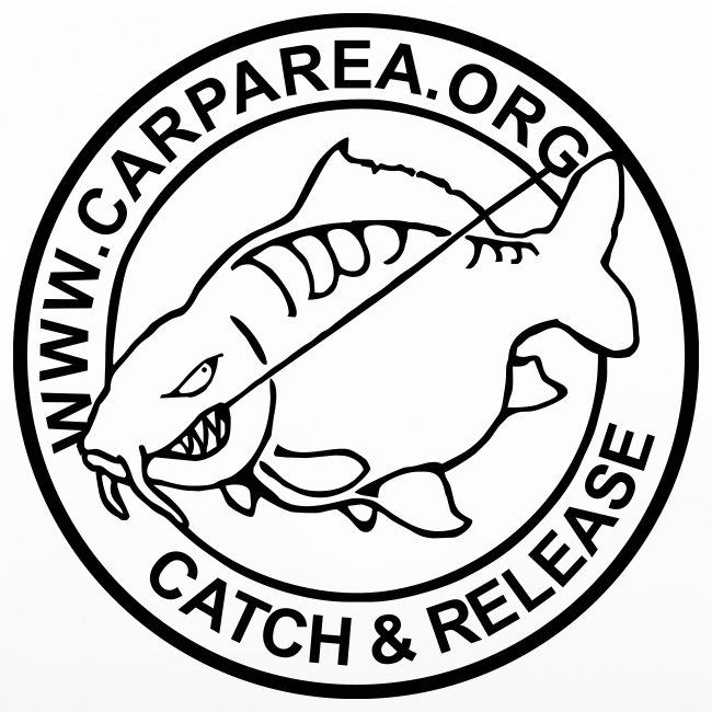 www.carparea.org Untersetzer 4er Pack