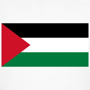 National flag of Palestine T-Shirts - Men's Organic T-shirt