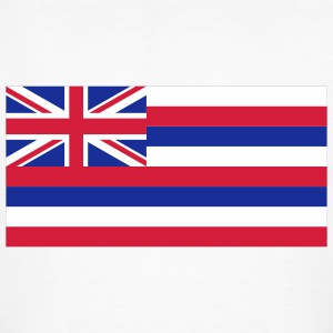National Flag of Hawaii T-Shirts - Men's Organic T-shirt