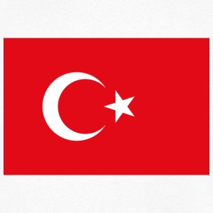 National Flag of Turkey T-Shirts - Men's V-Neck T-Shirt