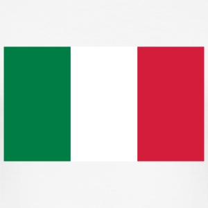 National Flag of Mexico T-shirts - Herre Slim Fit T-Shirt