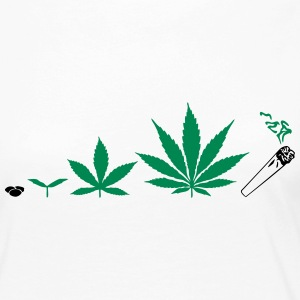 Cannabis development Long Sleeve Shirts - Women's Premium Longsleeve Shirt