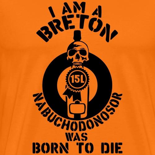 breton_nabuchodonosor_15_litres_bouteill