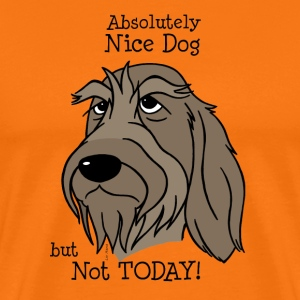Absolutely Nice Dog - Spinone - Männer Premium T-Shirt