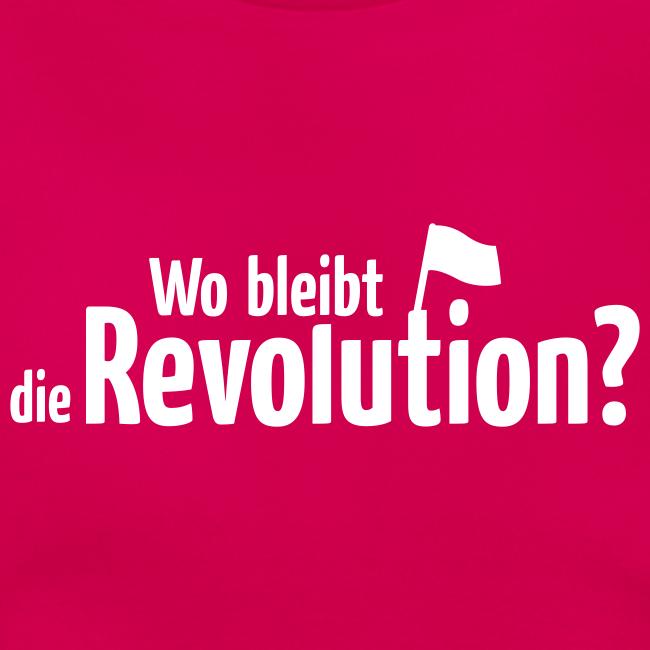 Wo bleibt die Revolution?