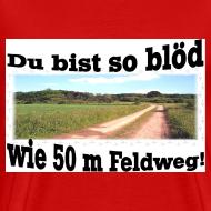 Motiv ~ Feldweg 2