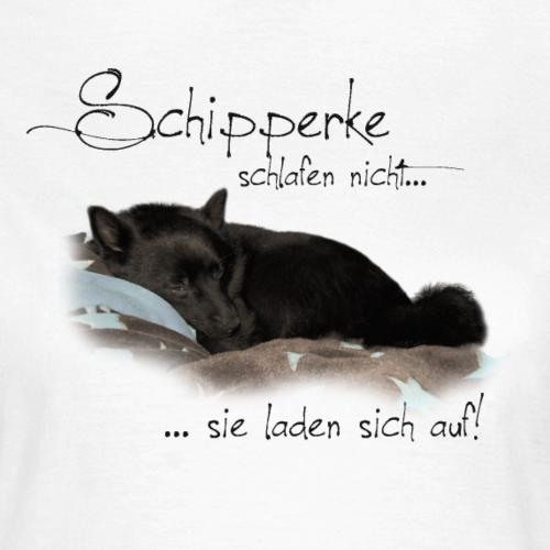 Schipperke schlafen nicht für helle Shirts