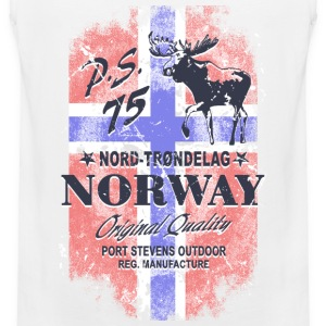 Norway Moose - Vintage Flag Sports wear - Men's Premium Tank Top