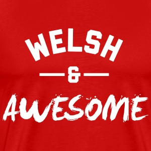 Wales Awesome Rugby – Mens tshirts - Men's Premium T-Shirt