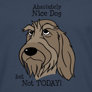 Absolutely Nice Dog - Spinone - Männer Premium Langarmshirt