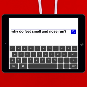 Search - Feet & Nose Hoodies & Sweatshirts - Contrast Colour Hoodie