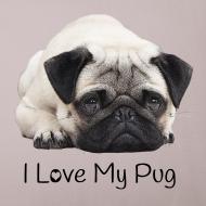 Motiv ~ I Love My Pug Sofakissen