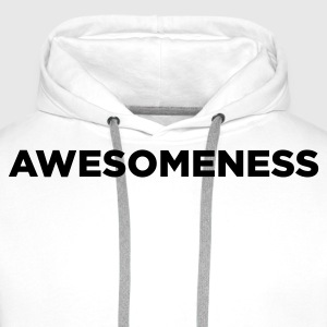 Awesomeness Sweaters - Mannen Premium hoodie