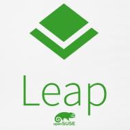 Design ~ Leap Mouse Pad