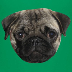 pug Shirts - Teenage Premium T-Shirt