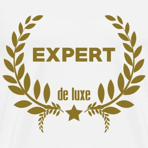 Consultant / Conseil / Expert / Manager / Experte Tee shirts - T-shirt Premium Homme