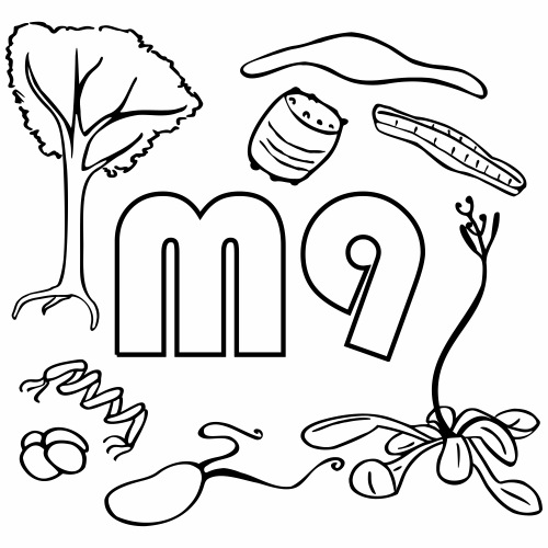 M9 Logo outline