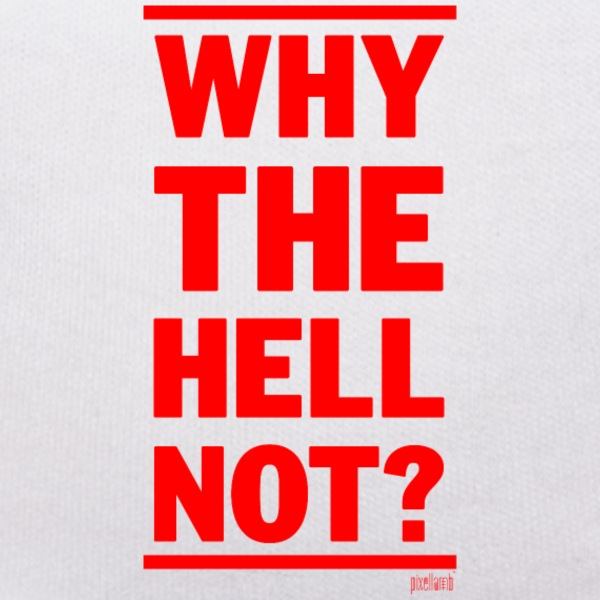 Why the hell not?, www.pixellamb.com Kuscheltiere - Teddy