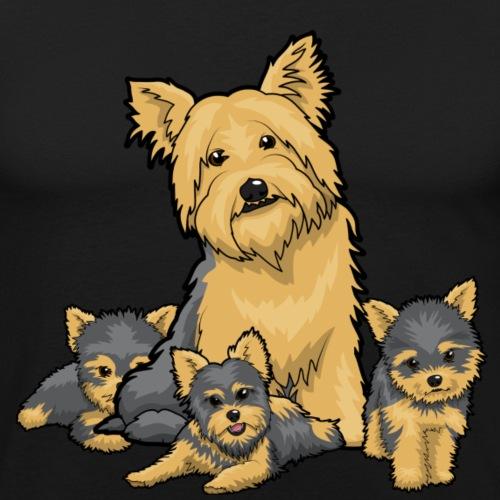 Yorkies & Puppies